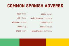 Common Spanish Adverbs  Kids