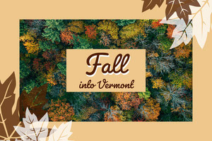 Beige and Green Fall Into Vermont Social Post 4x6 Postcard