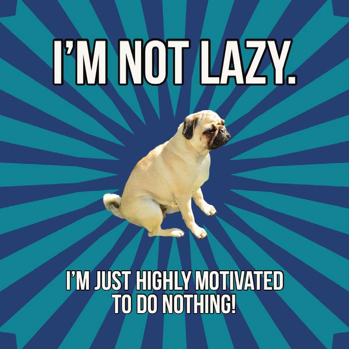 Blue Laziness Meme Instagram Square with Pug Dog Memes
