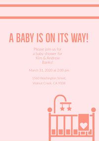 Pink and Navy Pink Baby Shower Invitation Babyshower-uitnodiging
