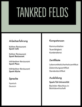 Tankred Felds Professioneller Lebenslauf