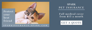 Navy Blue With Cat Pet Insurance Banner Banner
