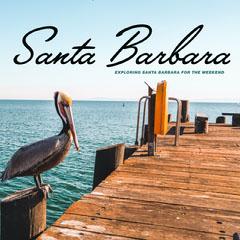 santa barbara instagram  Bird
