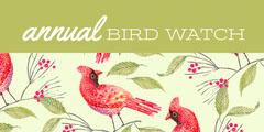 Red and Green Bird Watch Social Post Bird