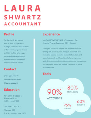 Blue White and Red Accountant Resume Resume  Examples