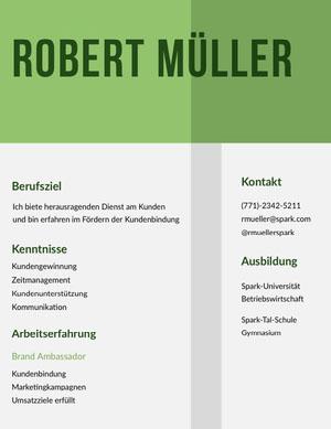 Robert Müller Lebenslauf