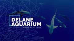 Blue and White Delane Aquarium Facebook Page Cover Ocean