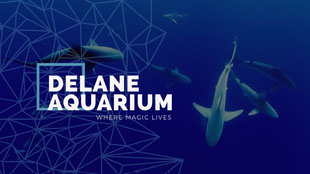 Blue and White Delane Aquarium Facebook Page Cover Facebook-omslag