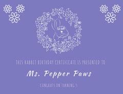 Ms. Pepper Paws Birthday