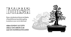bonsai Shopping
