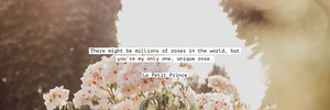Light, Bright Toned Inspiration Quote Twitter Header Twitter Header