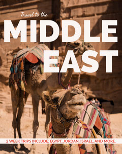 Brown Middle East Travel and Tourism Ad with Camels in Desert Desert