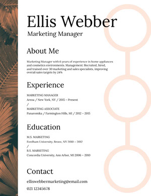 Brown and White Marketing Manager Resume Resume  Examples