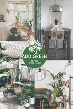 Green and White Houseplant Interior Design Pinterest Graphic Interior Design