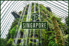 Green Singapore Postcard Vacation