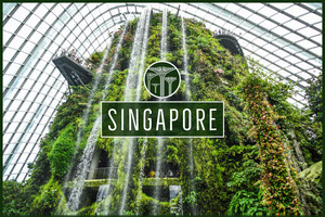 Green Singapore Postcard Cartão-postal