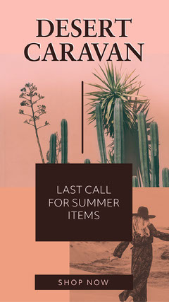 Pink, Grey and Brown Summer Collection Ad Instagram Story Cactus