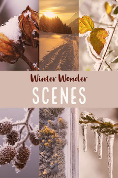 Warm Toned Winter Collage Instagram Story Winter