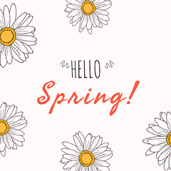White and Pink Hello Spring Instagram Graphic Hello