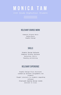 Grey and Blue Professional Resume CV
