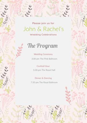 The Program Program