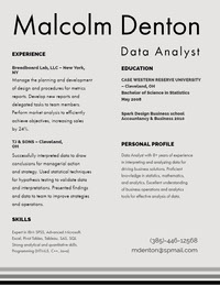 Black and Grey Data Analyst Resume CV