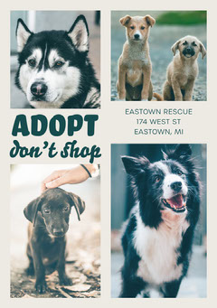 White With Photos Adopt Dog Rescue Flyer Dog Flyer