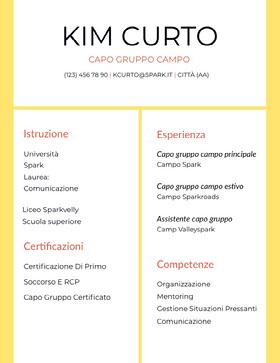 Kim Curto Curriculum
