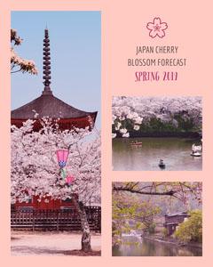Pink and Violet Japan Flyer Instagram Flyer