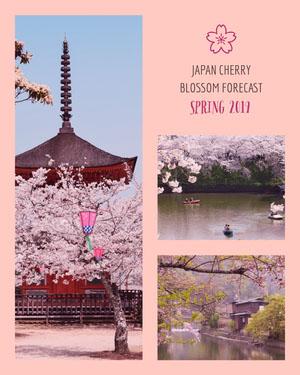 Pink and Violet Japan Flyer Pink Flyer