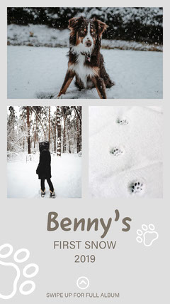 Light Toned, Winter Collage, Instagram Story Pets