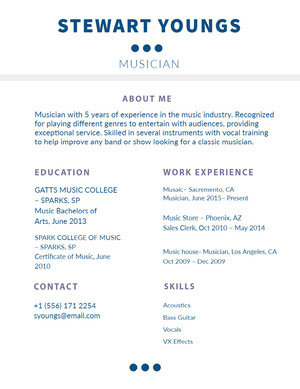 Blue and White Musician Resume Resume  Examples