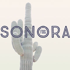 Sonora Mexico Travel and Tourism Instagram Square Graphic with Cactus Desert