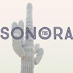 Sonora Mexico Travel and Tourism Instagram Square Graphic with Cactus Cactus