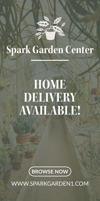 Light Toned, Garden Center Ad Instagram Story COVID-19 Re-opening