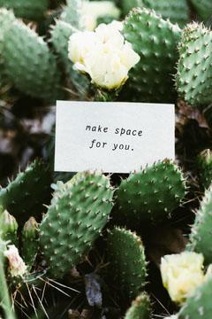 Green Paper Note With Inspiring Typewriter Phrase Among Cacti Pinterest Graphic Cactus