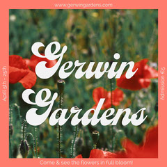 Red Border and Poppies Botanical Garden Event Instagram Square Garden