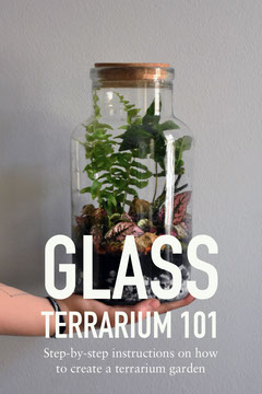 grey and white glass terrarium tutorial pinterest  Nature