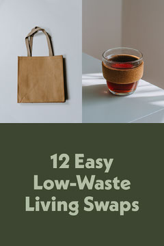 Low-Waste Living Swaps List Collage Earth