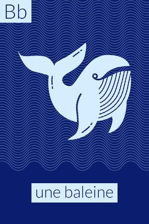 Blue Whale B Alphabet Flashcard Fiche mémoire