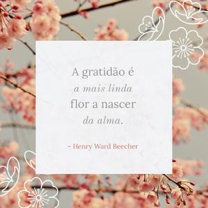 A gratidão é <BR>a mais linda <BR>flor a nascer<BR>da alma.  Tamanho de imagem do Instagram