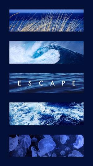 Blue With Photos Escape Social Post Wallpaper
