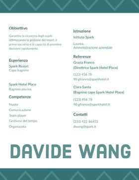 Davide Wang  Curriculum professionale