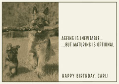 Grey Toned, Funny  Birthday Whishes Card Dog Flyer