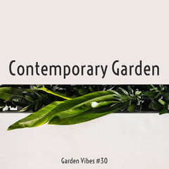 Contemporary Garden Instagram Square with Green Plant Photo Garden
