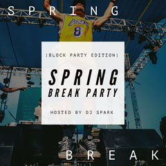 SPRING BREAK PARTY Spring
