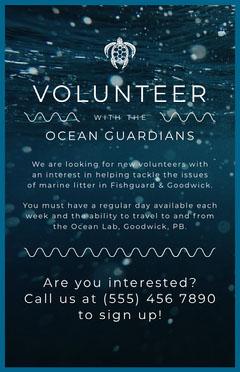 Volunteers Sea Poster Volunteer