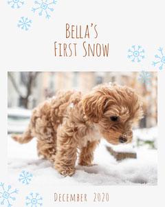 White Bella Puppy First Snow Igportrait Pets