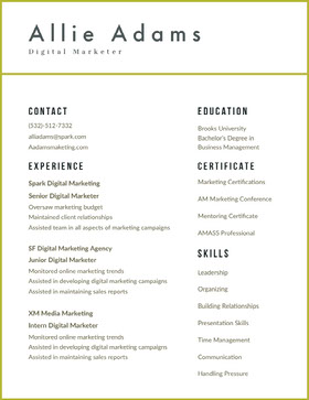 White and Grey Modern Digital Marketer Resume CV professionnel