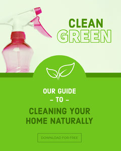 Green and Pink Cleaning Guide Social Post Cleaning Service